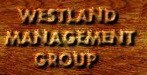 Westland Management